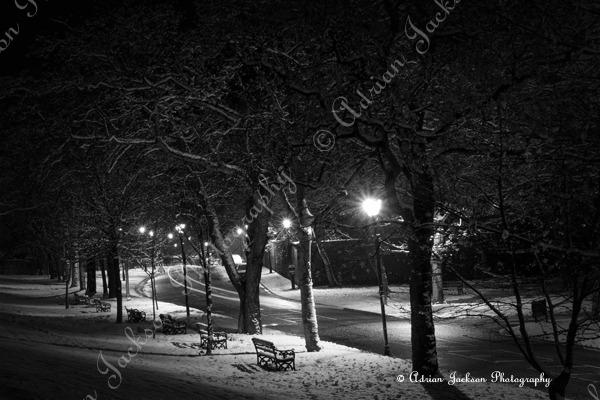 Night Time Snow B&W