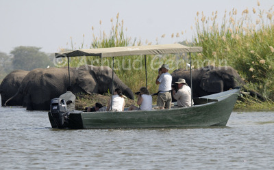 Elephants and Boat