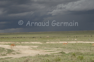Lake Nakuru Under Stormy Skies