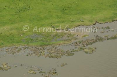Eastern Shore of Lake Nakuru