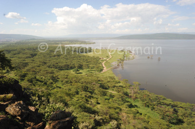 Green Season in Lake Nakuru