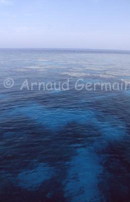 Middle Reef, Safaga