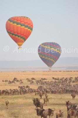 Balloons over the Masai Mara Reserve.