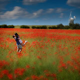 Poppies and Windmill