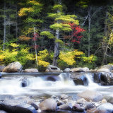 Autumn Colour Rapids