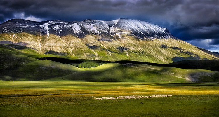 Mountains and Pasture