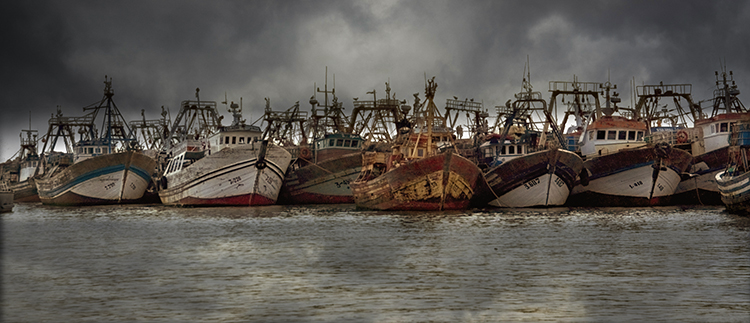 Moored Fishing Vessels