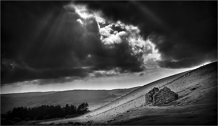 Shepherd's Refuge