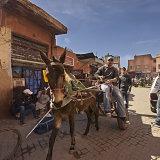 Mule Power