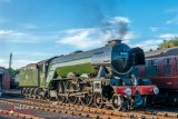 Flying Scotsman-15