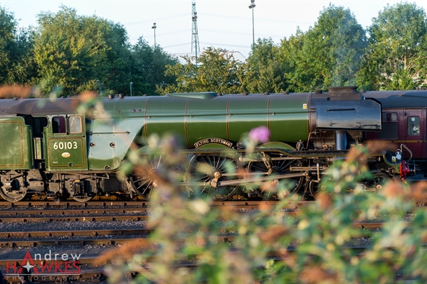 Flying Scotsman-17