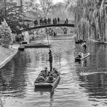 WINTER ON THE CAM