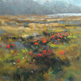 """Atlantic Poppies"""