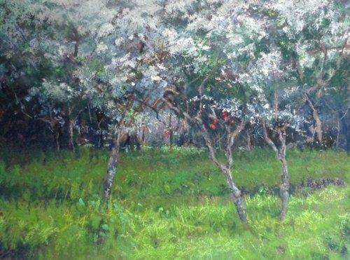 """""""May Blossoms"""" - 2015"""