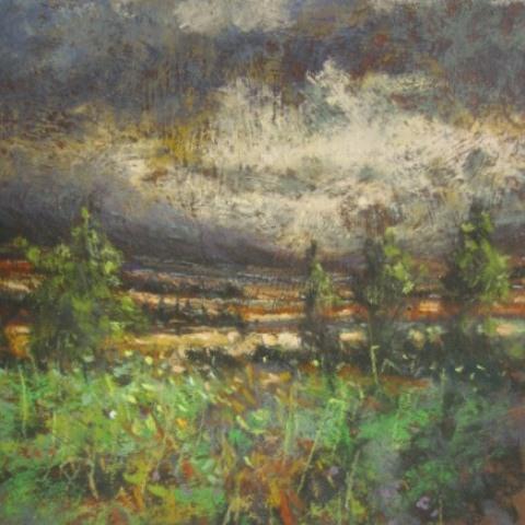 """Slieve Bloom Storm"" - 2012"