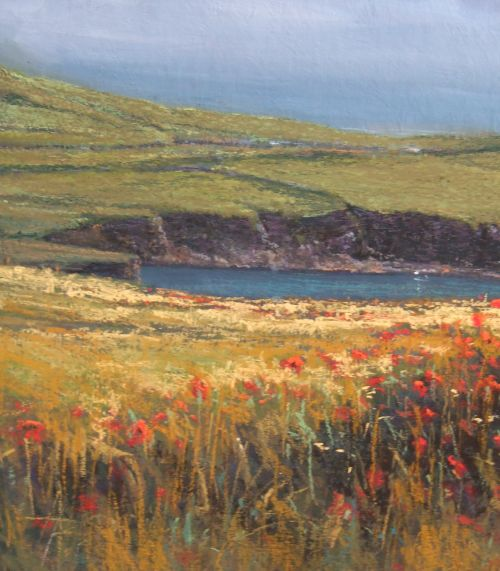 """""""Island Poppies, Co. Kerry"""""""