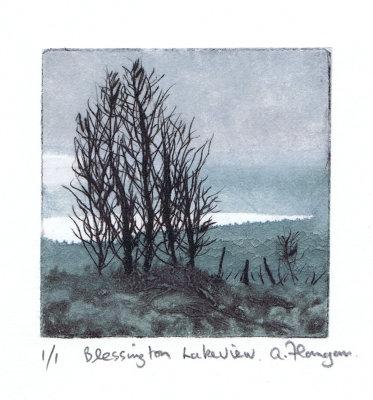 Blessington Lake View