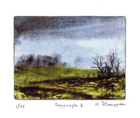 Bogscape 3