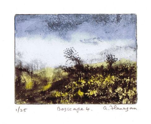 Bogscape 4