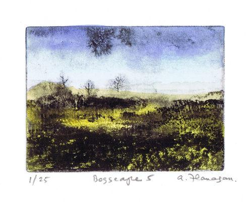 Bogscape 5