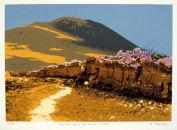 Bogscape near Slievemor, Achill