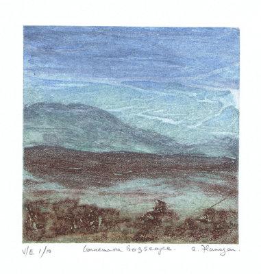 Connemara Bogscape