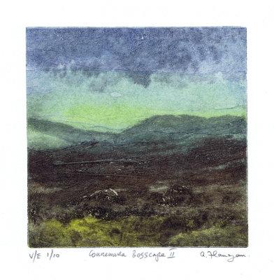 Connemara Bogscape 2