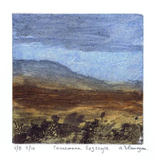 Connemara Bogscape Print