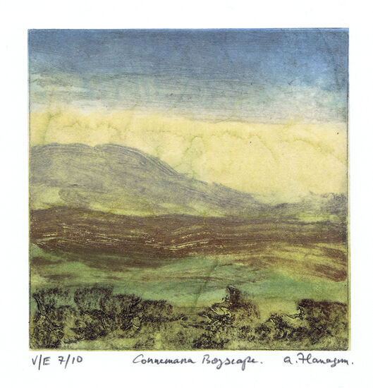Connemara Bogscape No 7