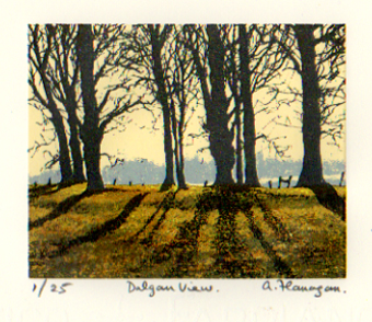 Dalgan View