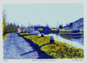 Grand Canal, Vicarstown