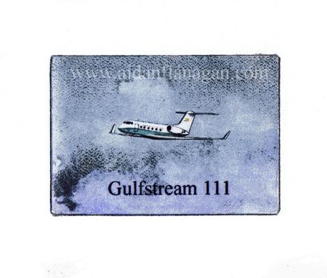 Gulfstream 111