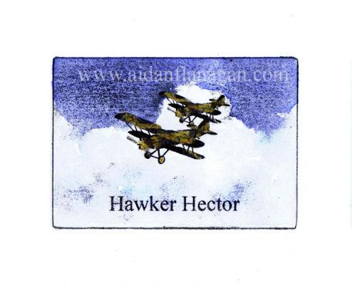 Hawker Hector