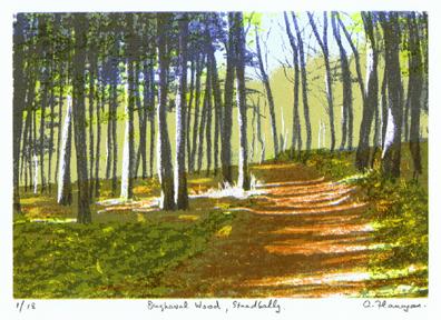 Oughaval Wood, Stradbally