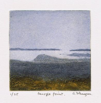 Renvyle Point
