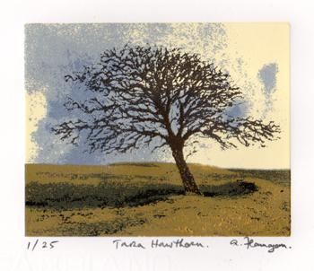 Tara Hawthorn