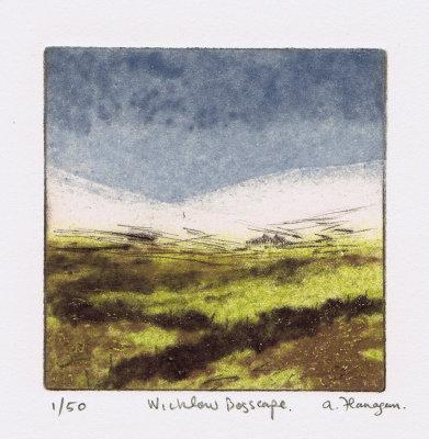 Wicklow Bogscape