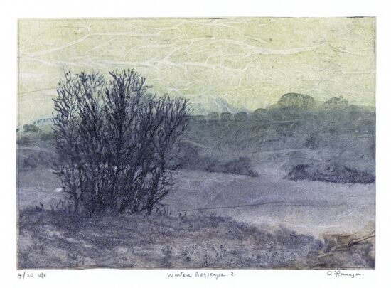 Winter Bogscape Print