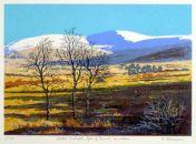 Winter Sunlight, Glen of Imaal.