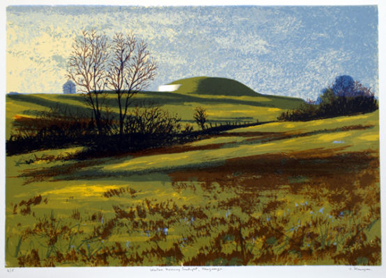 Winter Sunlight, Newgrange