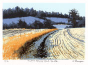 Winter morning near Donore