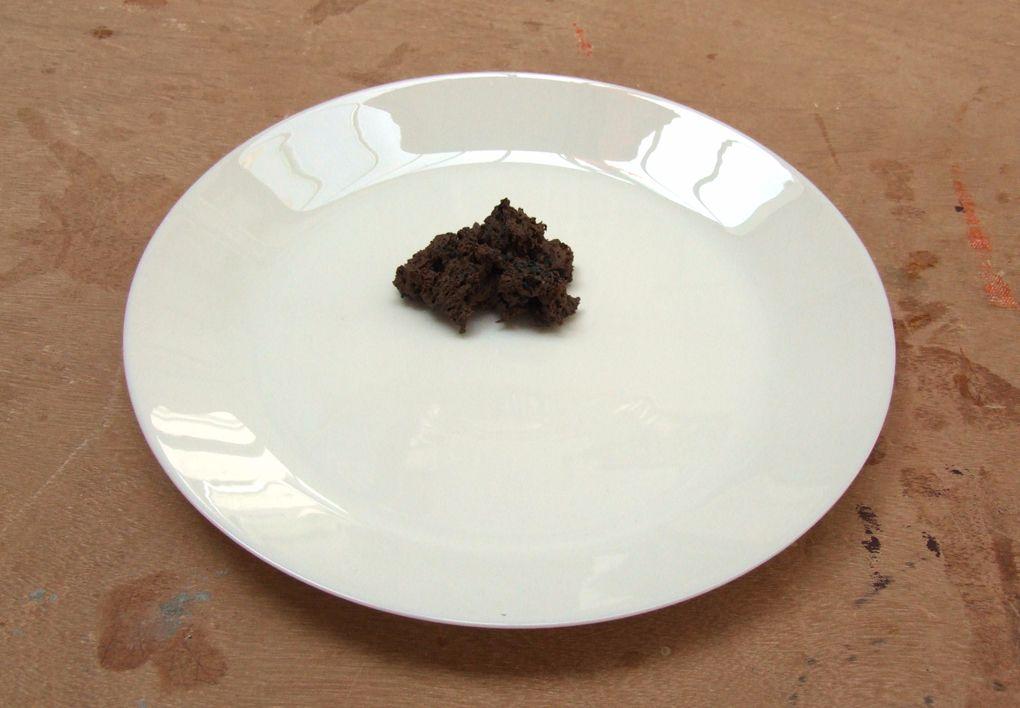 11. Brown Porcelain-soaked Natural Sponge