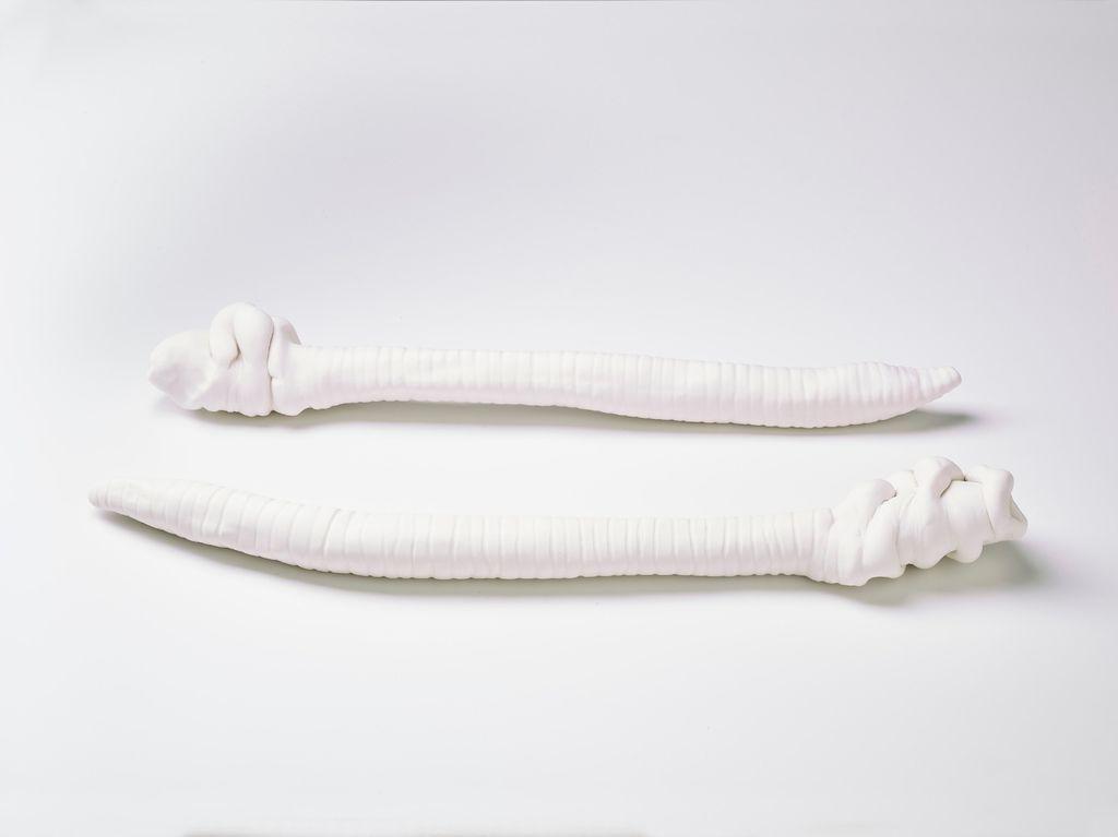 Giant Worm Pair