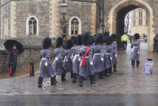 Commended - Pauline Marshall - Changing of the guards Windsor Castle