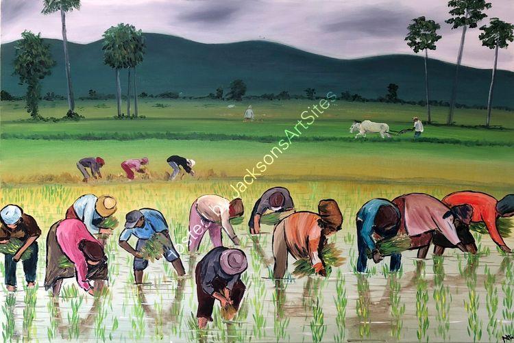 Aisha Haider The Rice Planters