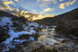 Thredbo River No.1