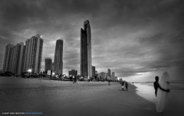 The Surfer's Paradise