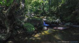 Minamurra Creek
