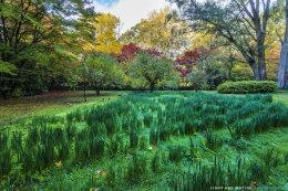 Breenhold Gardens, Mt. Wilson