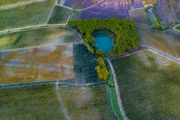 Tuscany - Cerreto Guidi